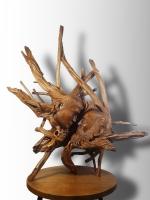 Дерев′яна скульптура під назвою «Молодість і старість». Художня композиція ручної роботи виконана із кореня дерева яблуні, і тому унікальна в своєму роді і практично неповторна. Дана робота окрім сильного декоративного ефекту несе глибокий філософський зміст, і буде виконувати могутню виховну функцію. Дивлячись на цей художній виріб можна побачити два барельєфа, голови юнака і старця , які органічно виступають з цільного кореня дерева. Ідея скульптури не нова, ще великий Леонардо звертався до кисті, щоб висловити вічний конфлікт батьків і дітей. В даному випадку, майстер втілив ідею у вигляді різьблення по дереву. «Молодість і старість» стане елітним і ексклюзивним подарунком на будь-який захід, впишеться в інтер′єр будинку або офісу, послужить оригінальною прикрасою і наповнить теплом і затишком будь-яке приміщення. Це ідейний художній твір, в якому автор намагається розкрити нам глибоку філософію. Молодість і старість - це суть одного процесу під назвою життя. Початок і кінець. Альфа і омега.