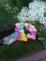 Крокуси з фоамірану в кольорах.  Дуже гарно виглядають в інтер