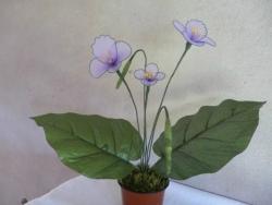 цветок из капрона. Незабудки