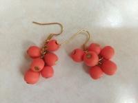 Сережки ручної роботи з полімерної глини з яскравими фарбами осені - ягодами гробини