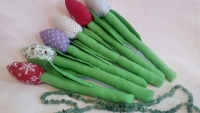 Тюльпани Тильда