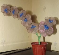 Цветок 25грн