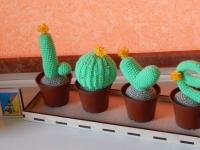 Вязаные кактусы LOVE